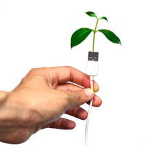 Tip of the Week: 2 Ways Your Business Can Reduce Its Environmental Footprint